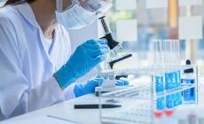 Лабораторное обследование пары перед ЭКО